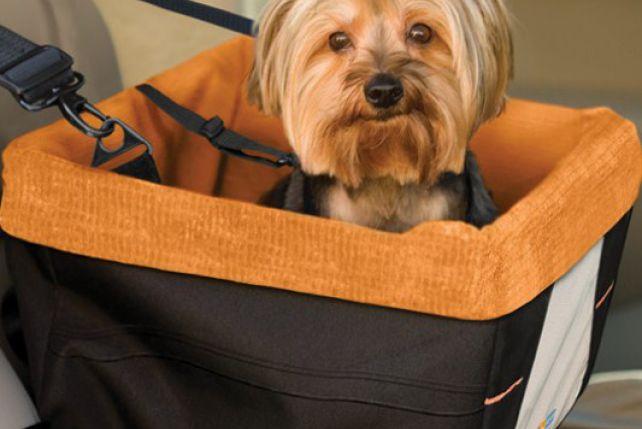Pet Booster Seat >> W podróży: foteliko-torby - ZPAZUREM.PL