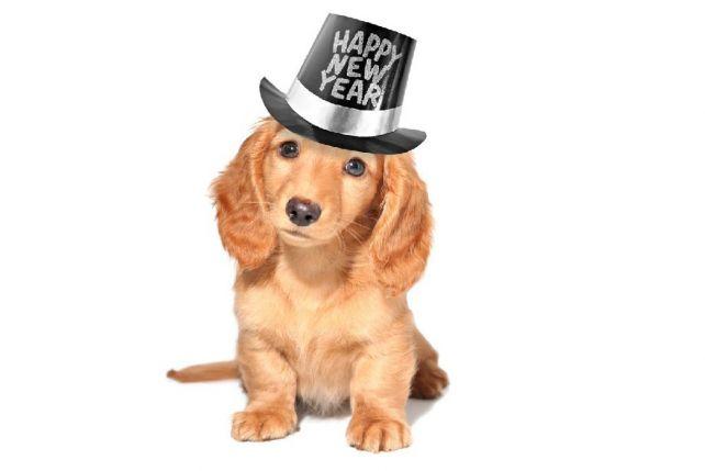 Czy jestem już gotowy, by powitać Nowy Rok?